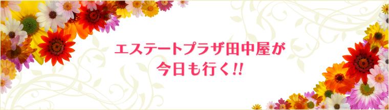 エステートプラザ田中屋が今日も行く!!